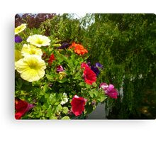 Hanging basket over the water . Canvas Print