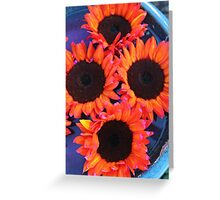 Flower Four Pack in Corrales New Mexico Greeting Card