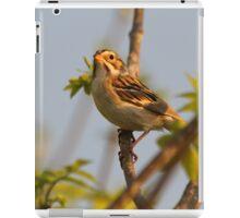 Singing Sparrow iPad Case/Skin