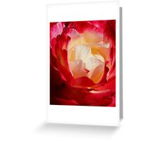 A Unique Rose Greeting Card