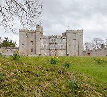 Chillingham Castle by David Patterson