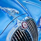 Blue Jaguar 3.8 Litre by BAR-ART