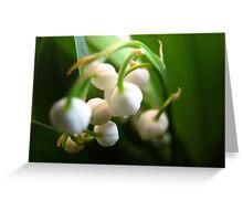 Little bells of Muguet Greeting Card