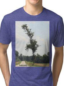 Indubitably Tri-blend T-Shirt