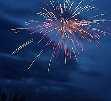 Evening of the Fireworks by Carol Bailey White