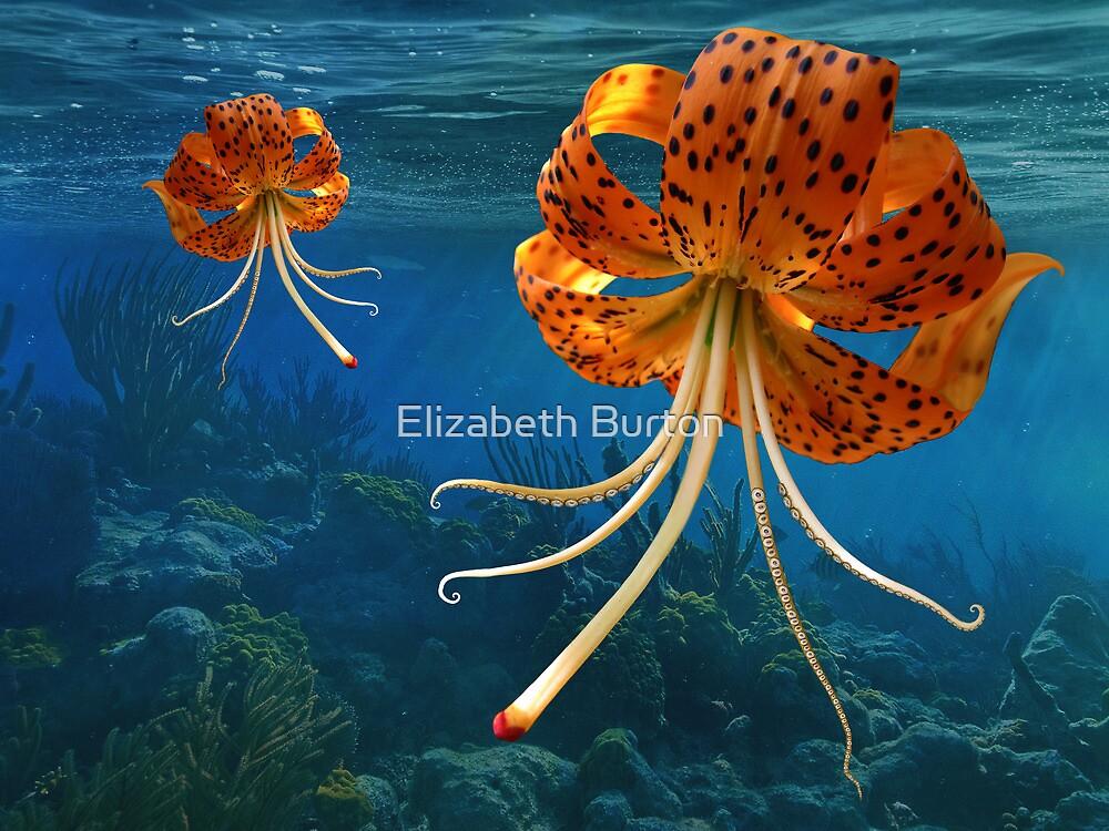 Octo-Flower Jelly-Pus by Elizabeth Burton