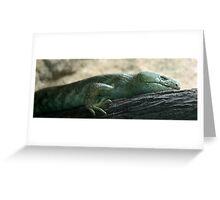 Prehensil Tailed Skink Greeting Card