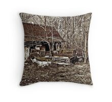 And The Windows Stand Empty Throw Pillow