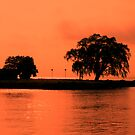 Orange Colored Sky by Barry W  King