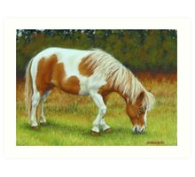 Tranquility-Mini Pony Mare Art Print