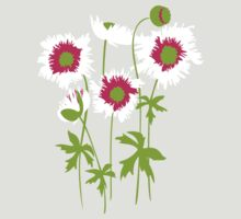 Graphic ragged poppies white pink by Sarah Trett
