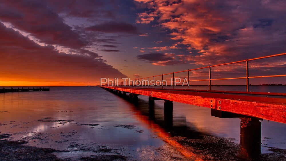 """""""To Infinity"""" by Phil Thomson IPA"""