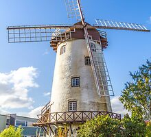 The Windmill, Launceston, Tasmania, Australia by Elaine Teague