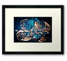 Fish and Batiscaf Graffiti  Framed Print