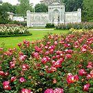 Rosengarten - Vienna - Austria by Arie Koene