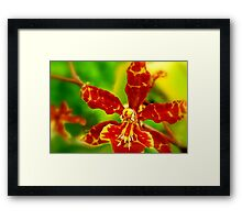 A Distant Memory Framed Print