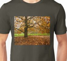 Come and seek comfort Unisex T-Shirt