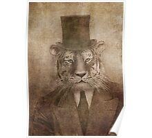 Sir Tiger Poster