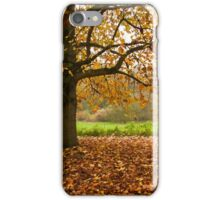 Come and seek comfort iPhone Case/Skin