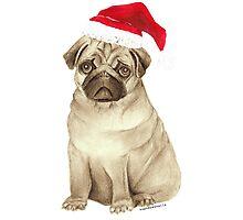 Christmas Pug Photographic Print
