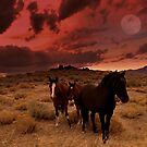 Wild Horse Moon  by Jeanne  Nations