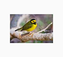 Hooded Warbler T-Shirt