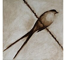 Bird on a wire painting Photographic Print