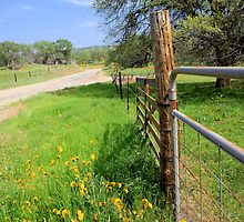 Along a country road by MarthaBurns