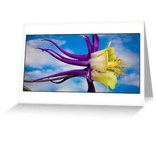 Reach for the Sky Columbine Greeting Card