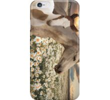 Nyente & Sapphire iPhone Case/Skin