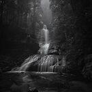 Empress Falls by Peter Hill