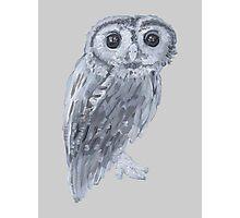 Cute Owl Photographic Print
