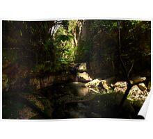 Moss Gardens Waterfall  Poster