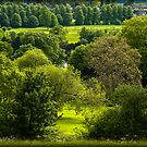 Donnington Grove Newbury by mlphoto