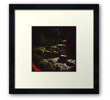Holga Botanic Garden #2 Framed Print