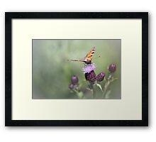 Wonderful world....(2) Framed Print