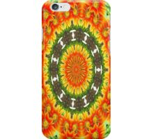 Kaleidoscopic Orange Garden Gazanias iPhone Case/Skin
