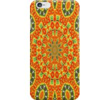 Kaleidoscope of Bold Orange Gazanias  iPhone Case/Skin