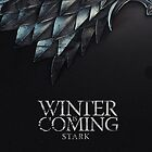 Winter is coming by Dejay