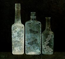 Nature Bottles by Barbara Ingersoll
