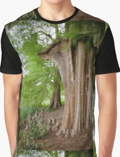 Under the swamp cypresses Graphic T-Shirt