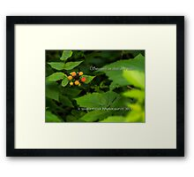 Sweetness in their own time. Framed Print