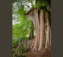 Under the swamp cypresses Unisex T-Shirt