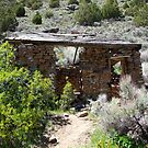Old worn,miners Cabin in the desert,near Reno Nevada USA by Anthony & Nancy  Leake