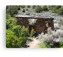 Old worn,miners Cabin in the desert,near Reno Nevada USA Canvas Print