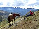 Peruvian Mountain Guide by Ludwig Wagner