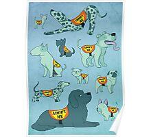 Adopt a Dog Poster