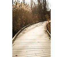 Bridge to Where? Photographic Print