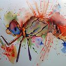 Dragonfly-eye by Karl Fletcher