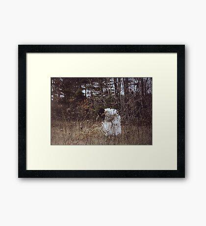 Wolf in Sheep's Skin Framed Print